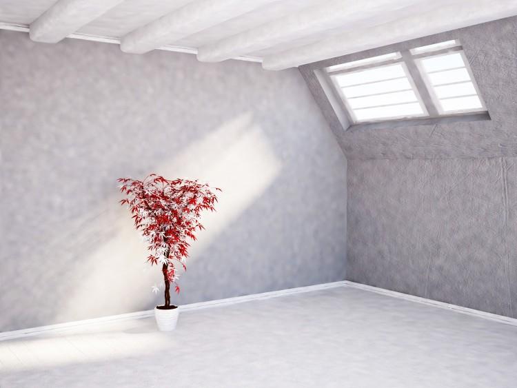 Dekorowanie ścian farbami